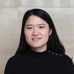 Project Leader, Xin Lab
