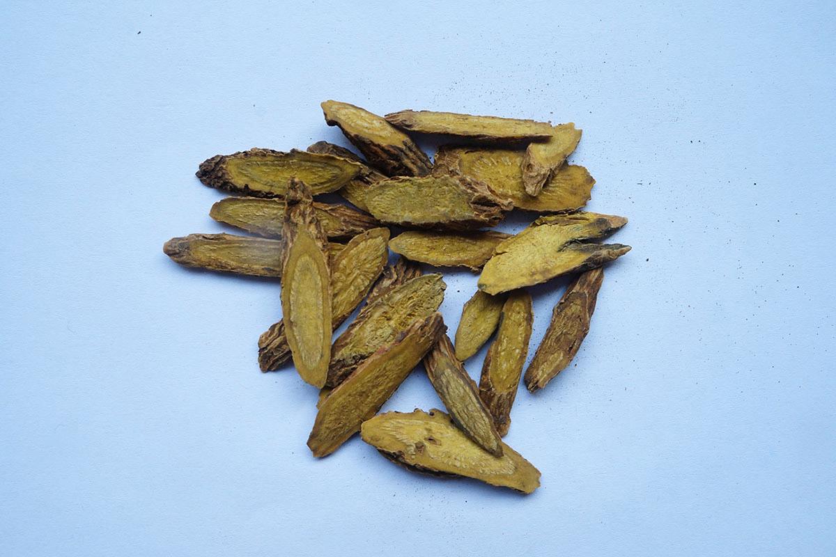 Scutellaria-rootsmall